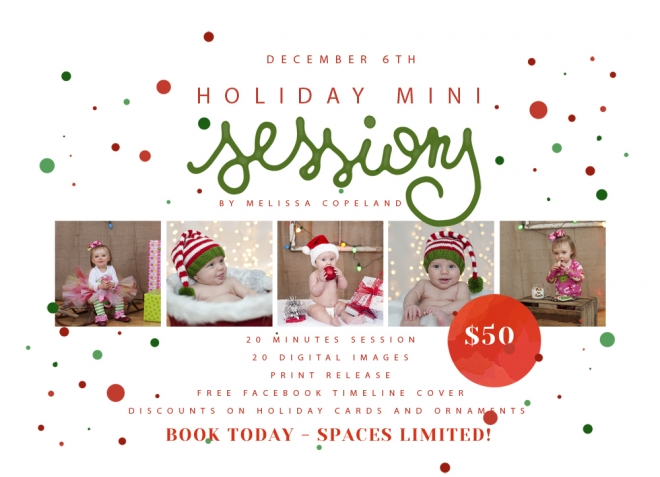 MCPholidayminisessions2014